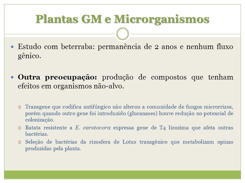 Plantas GM e Microrganismos