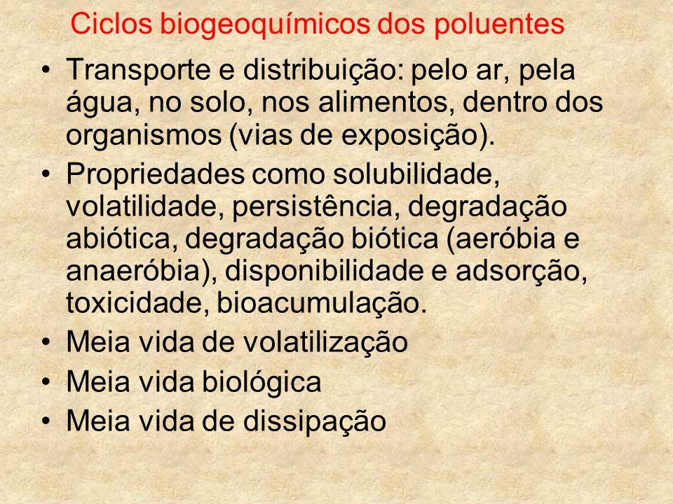 Ciclos biogeoquímicos dos poluentes