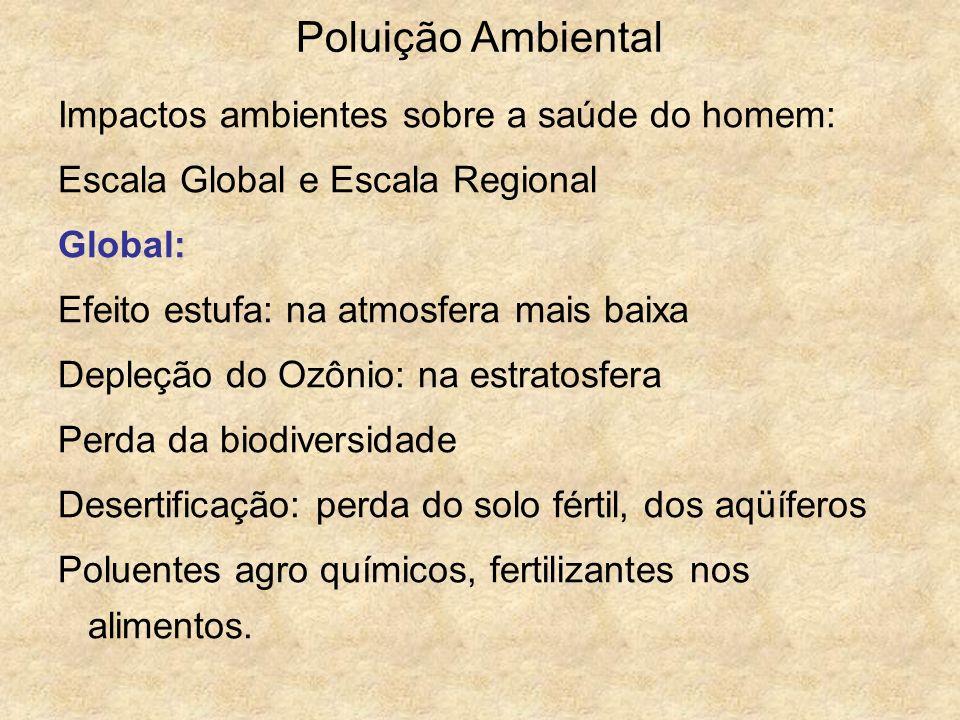 Poluição Ambiental Impactos ambientes sobre a saúde do homem: