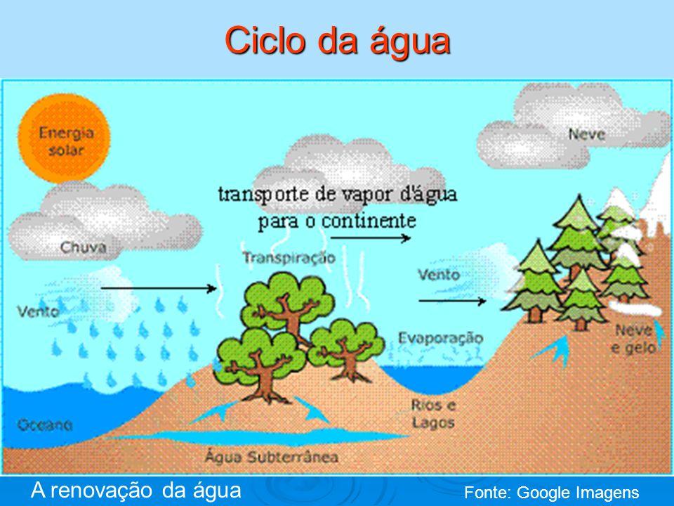 Ciclo da água A renovação da água Fonte: Google Imagens