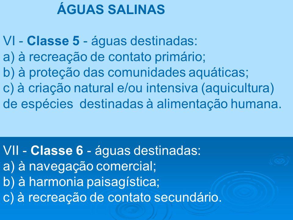 ÁGUAS SALINAS VI - Classe 5 - águas destinadas: a) à recreação de contato primário; b) à proteção das comunidades aquáticas;