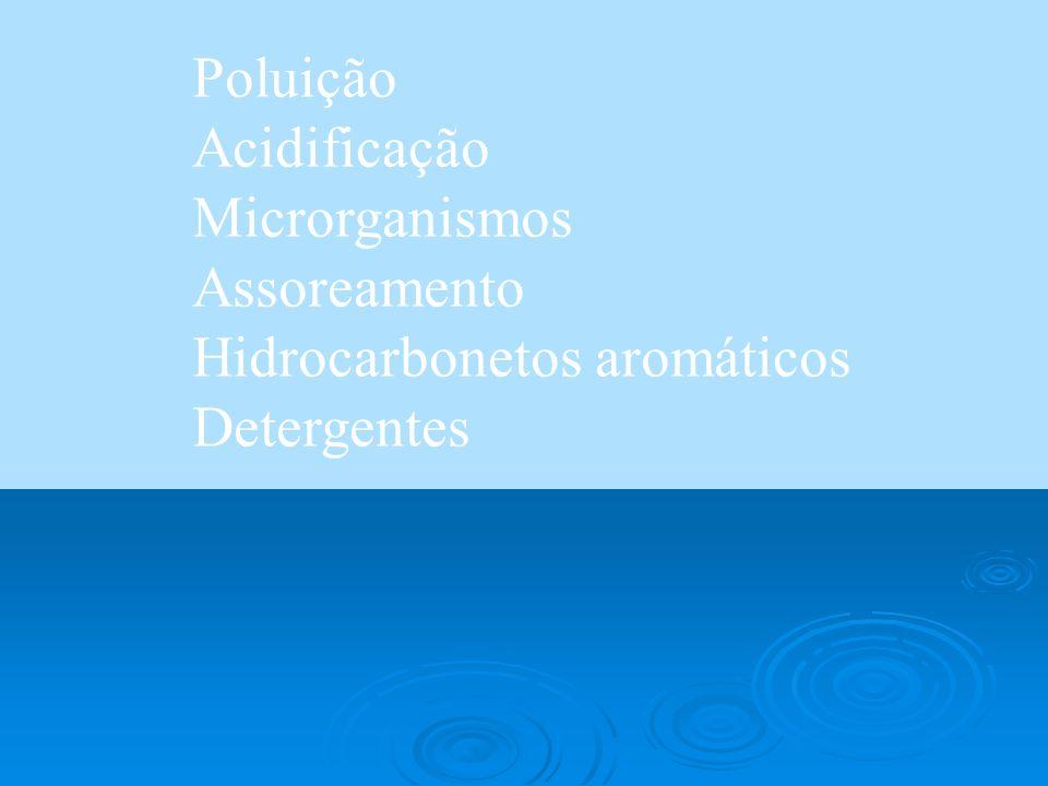 Poluição Acidificação Microrganismos Assoreamento Hidrocarbonetos aromáticos Detergentes