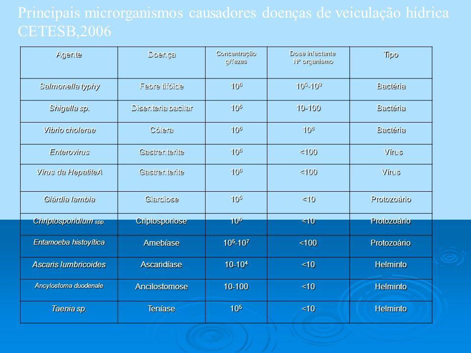 Principais microrganismos causadores doenças de veiculação hídrica