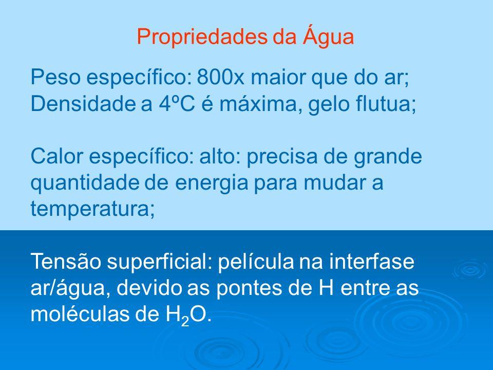 Propriedades da Água Peso específico: 800x maior que do ar; Densidade a 4ºC é máxima, gelo flutua;