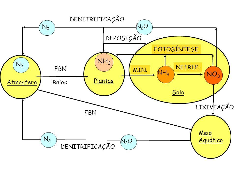 NH3 NO3 DENITRIFICAÇÃO N2 N2O DEPOSIÇÃO FOTOSÍNTESE N2 FBN NITRIF.