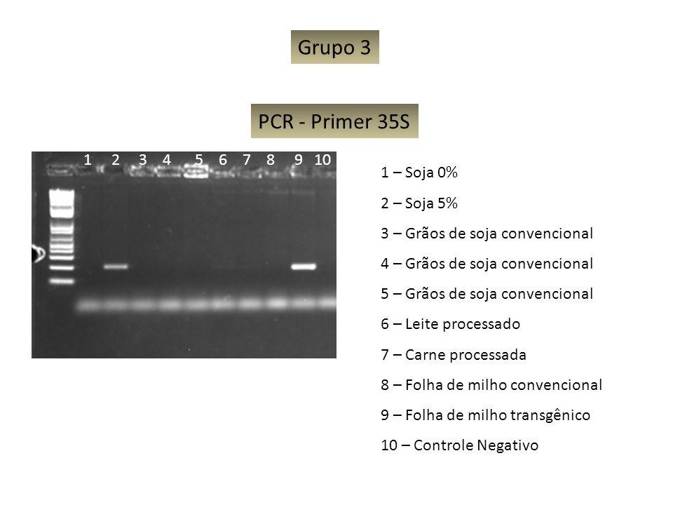 Grupo 3 PCR - Primer 35S 1 2 3 4 5 6 7 8 9 10 1 – Soja 0% 2 – Soja 5%