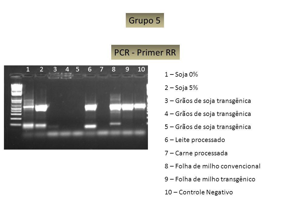 Grupo 5 PCR - Primer RR 1 2 3 4 5 6 7 8 9 10 1 – Soja 0% 2 – Soja 5%