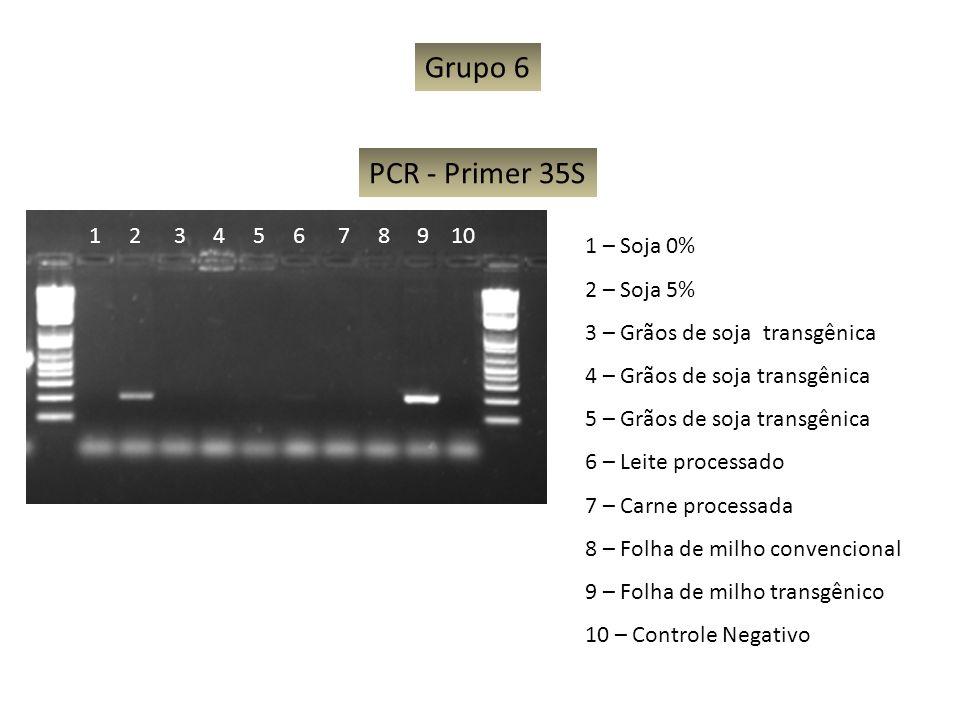 Grupo 6 PCR - Primer 35S 1 2 3 4 5 6 7 8 9 10 1 – Soja 0% 2 – Soja 5%