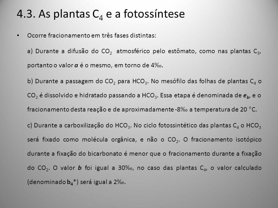 4.3. As plantas C4 e a fotossíntese
