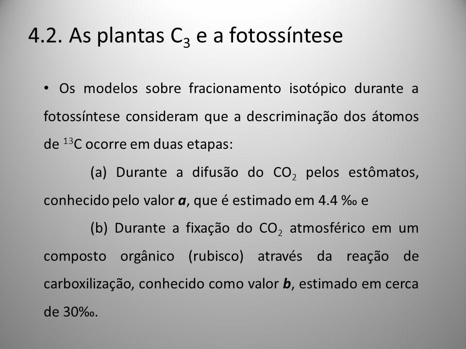 4.2. As plantas C3 e a fotossíntese