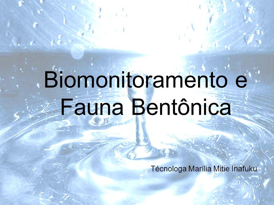 Biomonitoramento e Fauna Bentônica