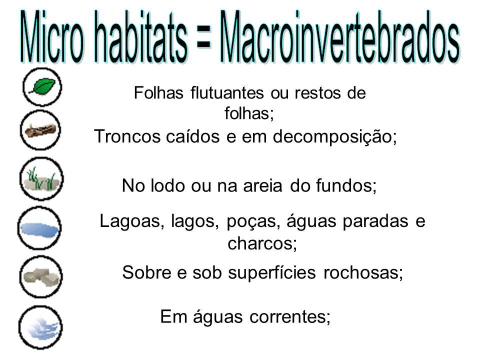Micro habitats = Macroinvertebrados