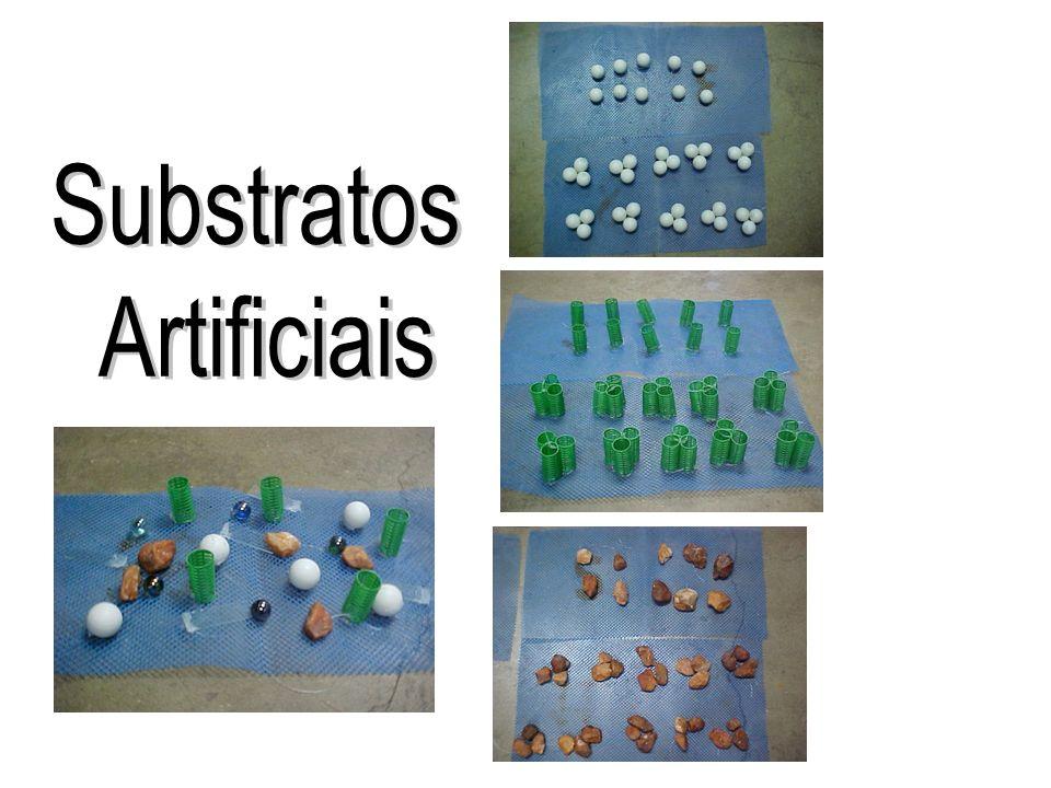 Substratos Artificiais