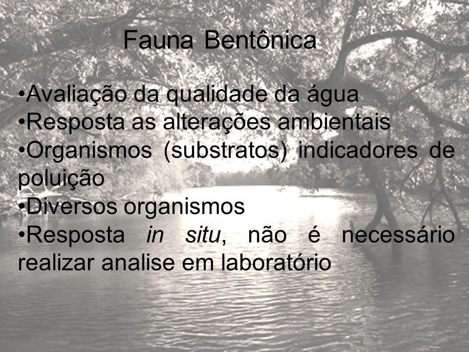 Fauna Bentônica Avaliação da qualidade da água