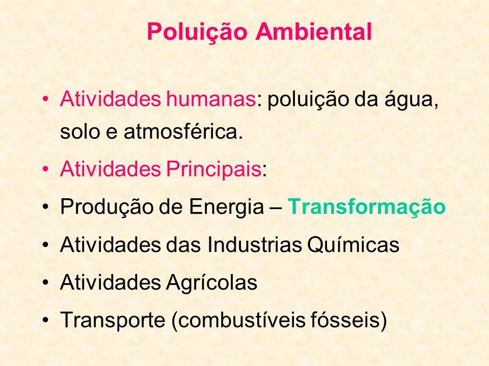 Poluição Ambiental Atividades humanas: poluição da água, solo e atmosférica. Atividades Principais: