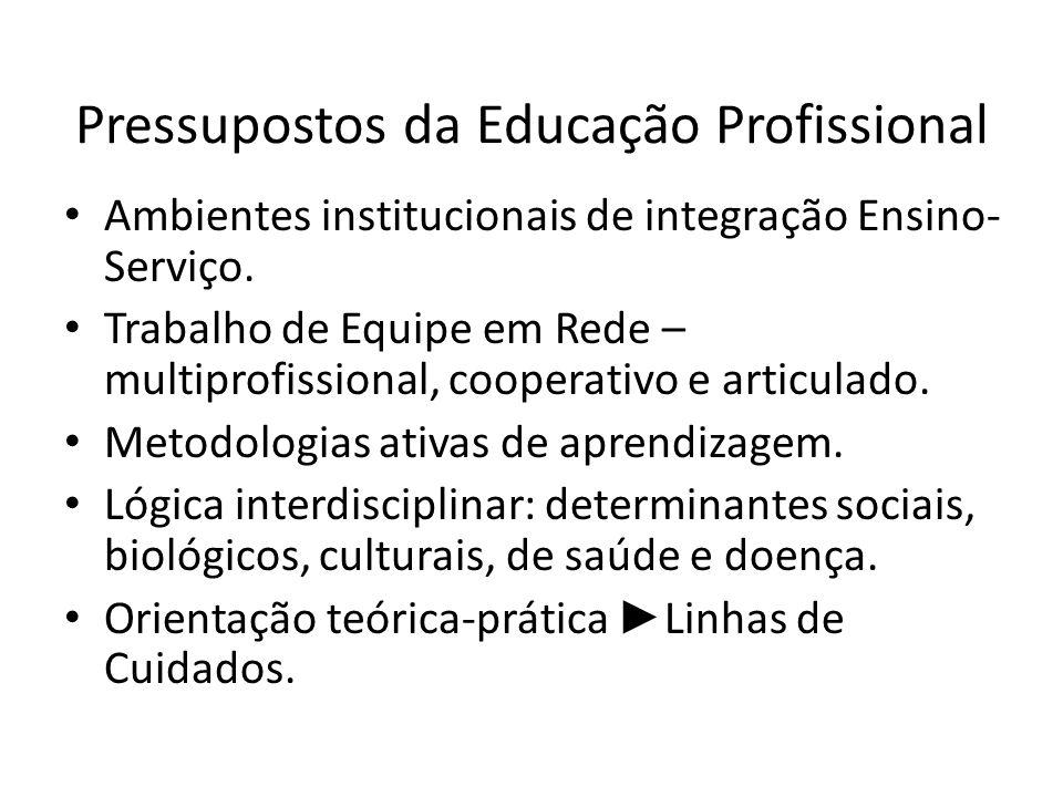 Pressupostos da Educação Profissional