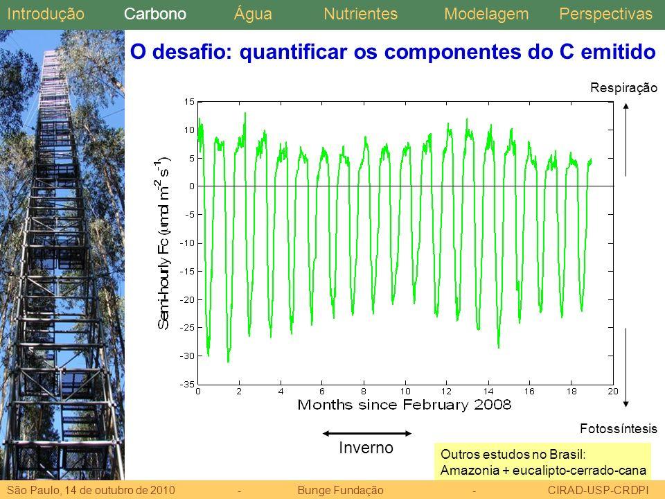 O desafio: quantificar os componentes do C emitido