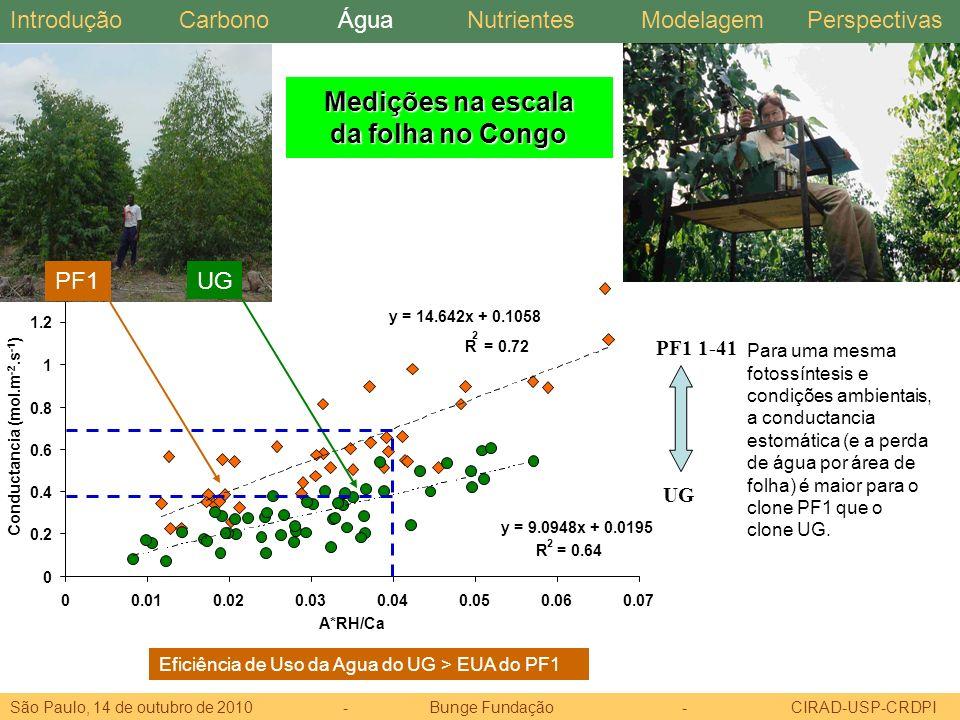 Medições na escala da folha no Congo