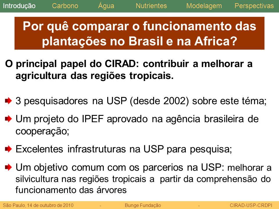 Por quê comparar o funcionamento das plantações no Brasil e na Africa