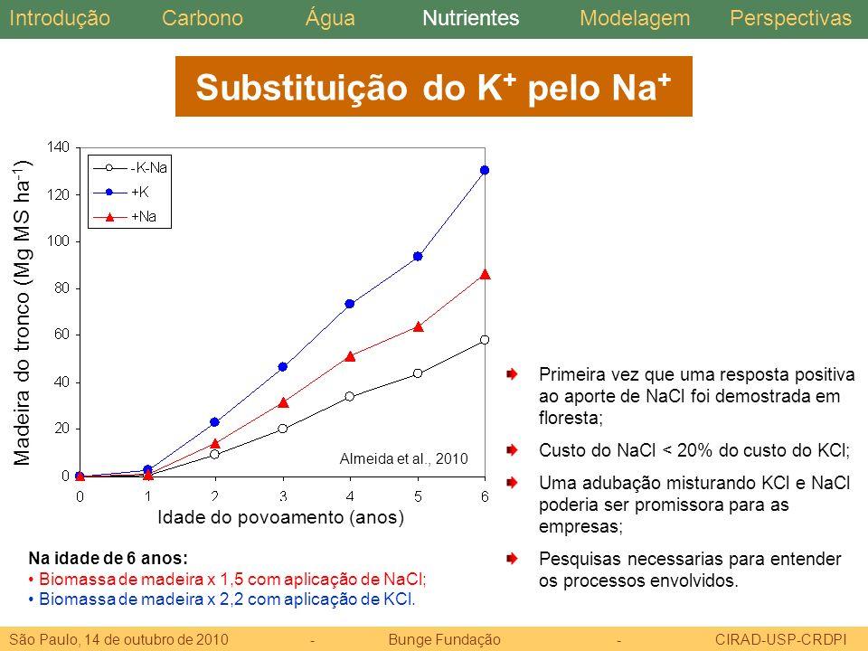 Substituição do K+ pelo Na+