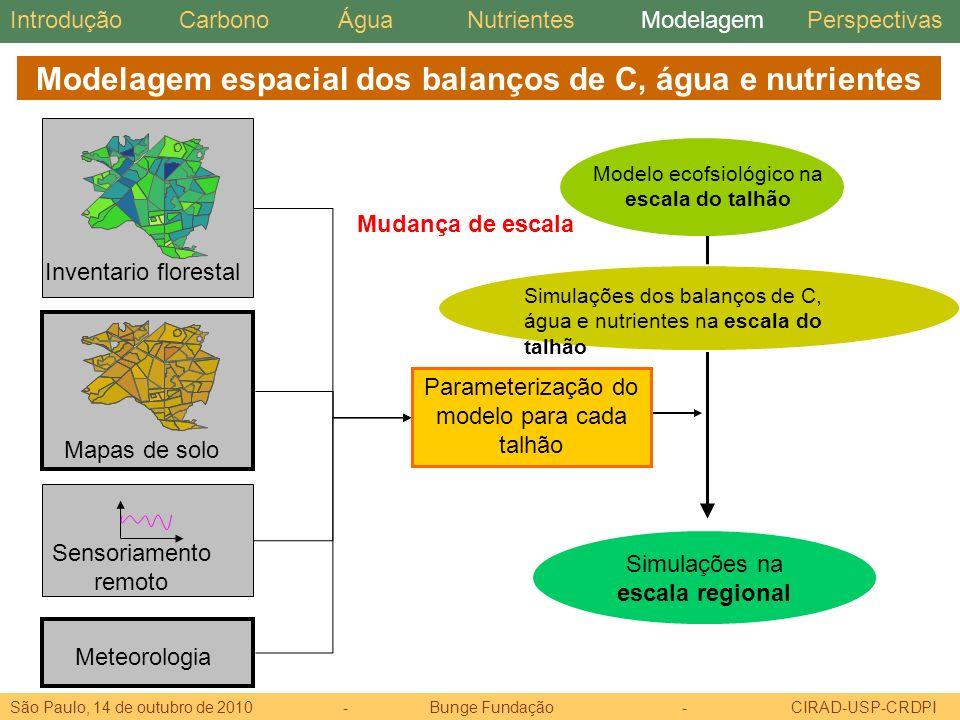 Modelagem espacial dos balanços de C, água e nutrientes