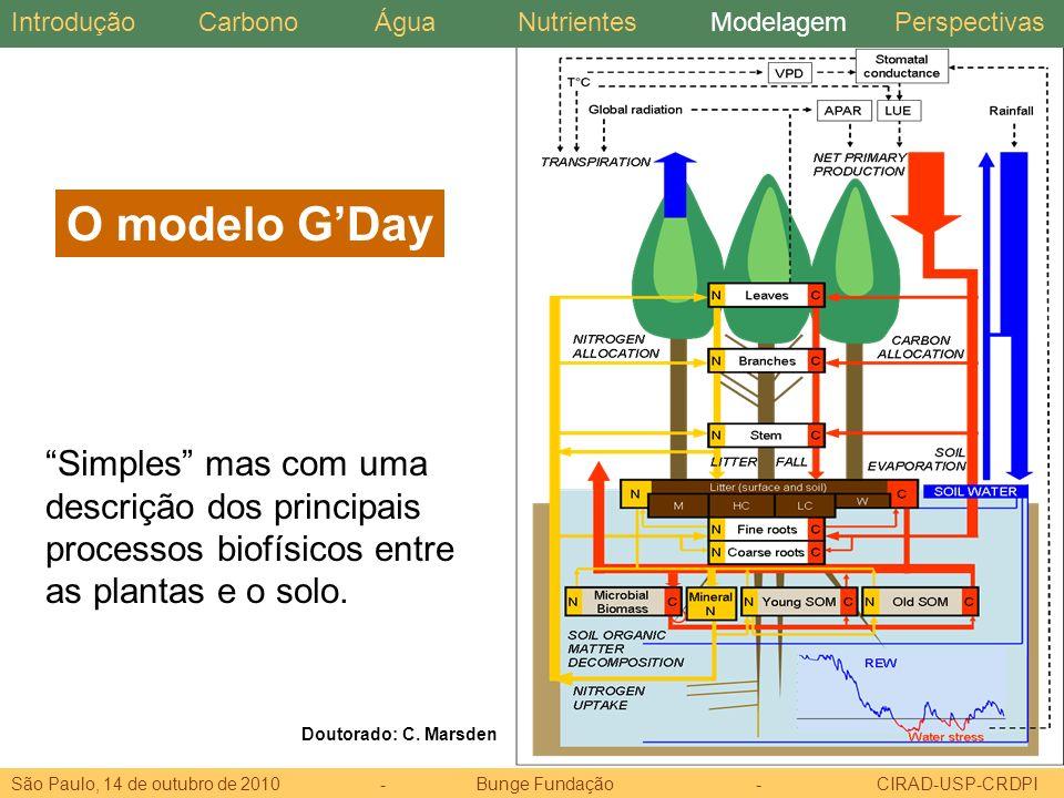 Introdução Carbono. Água. Nutrientes. Modelagem. Perspectivas. O modelo G'Day.