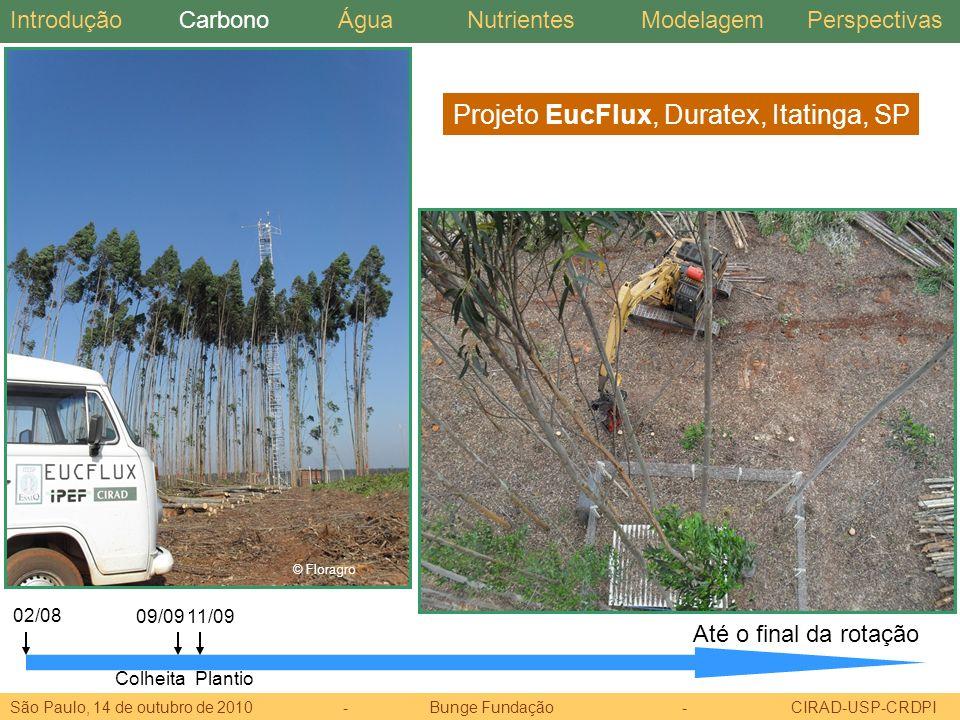 Projeto EucFlux, Duratex, Itatinga, SP