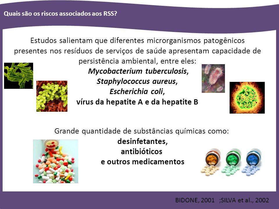 Mycobacterium tuberculosis, Staphylococcus aureus, Escherichia coli,