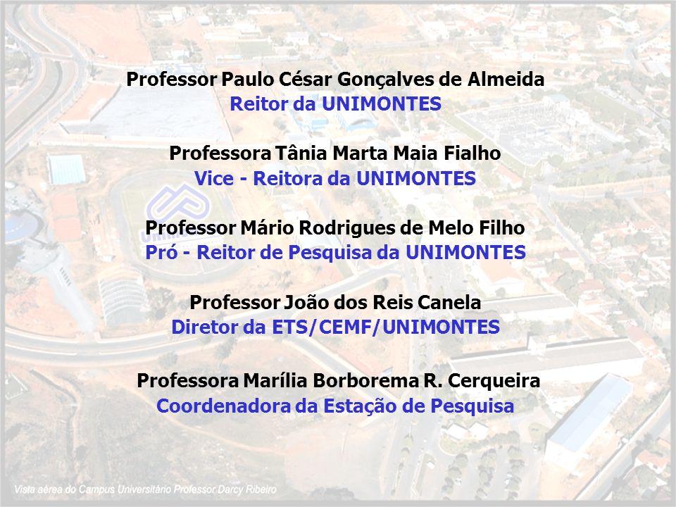 Professora Marília Borborema R. Cerqueira