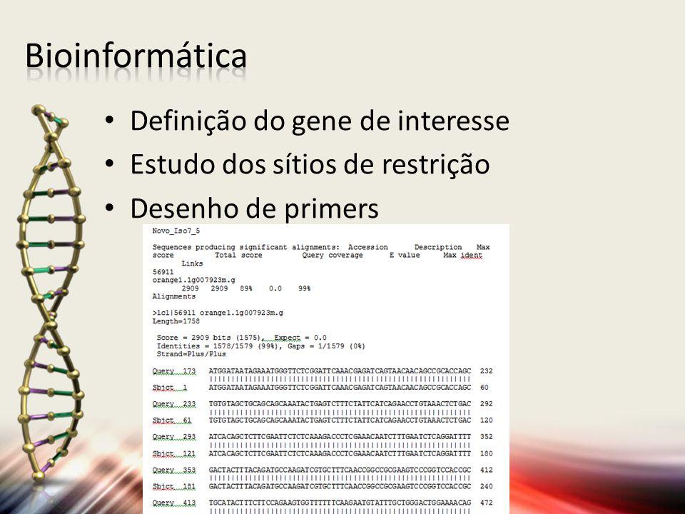 Bioinformática Definição do gene de interesse