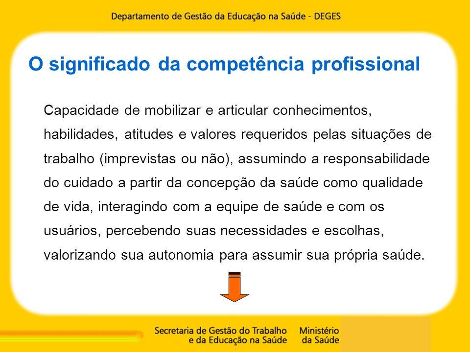 O significado da competência profissional