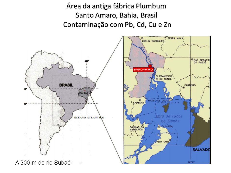 Área da antiga fábrica Plumbum Santo Amaro, Bahia, Brasil