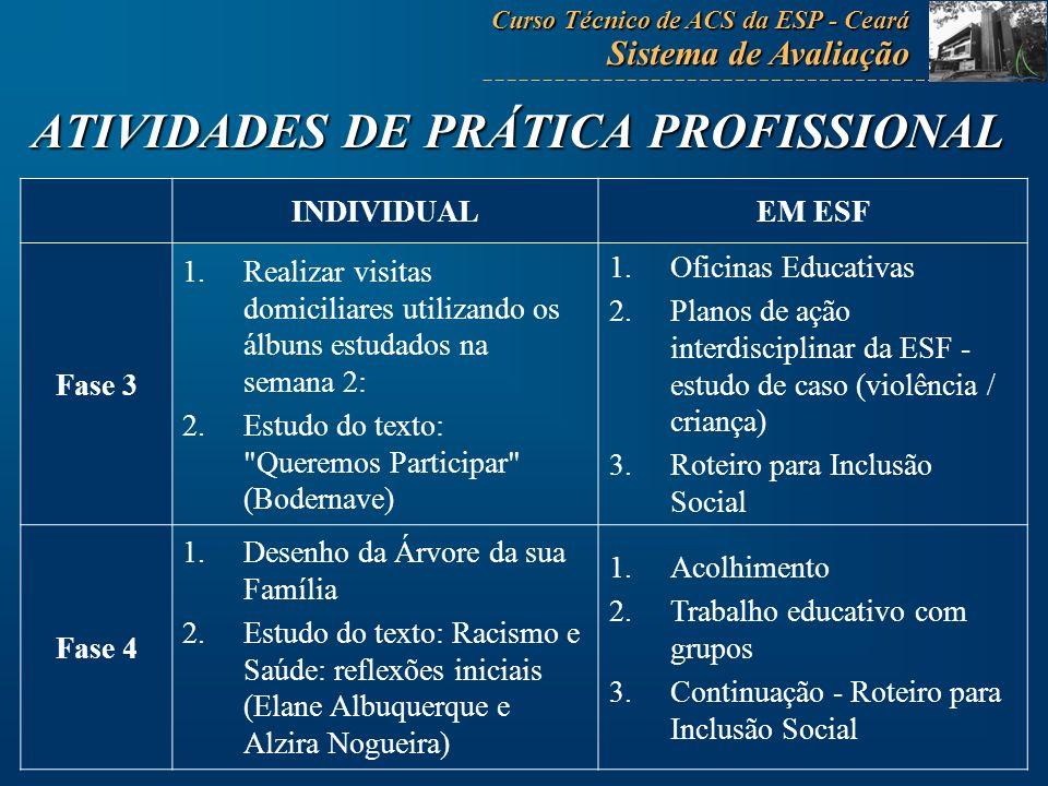 ATIVIDADES DE PRÁTICA PROFISSIONAL