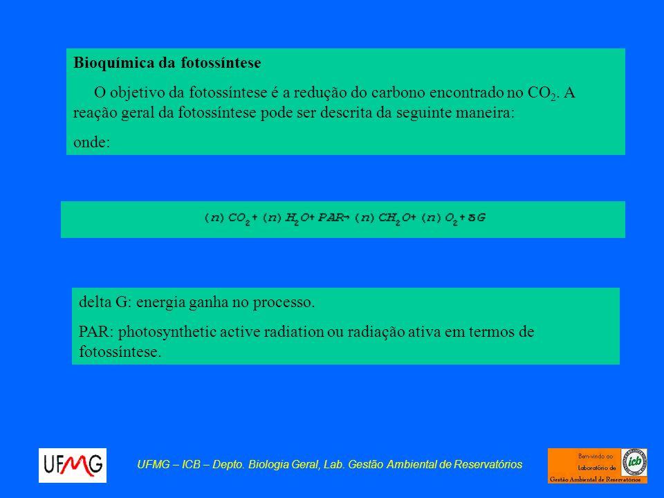 Bioquímica da fotossíntese