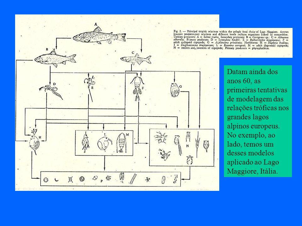 Datam ainda dos anos 60, as primeiras tentativas de modelagem das relações tróficas nos grandes lagos alpinos europeus.