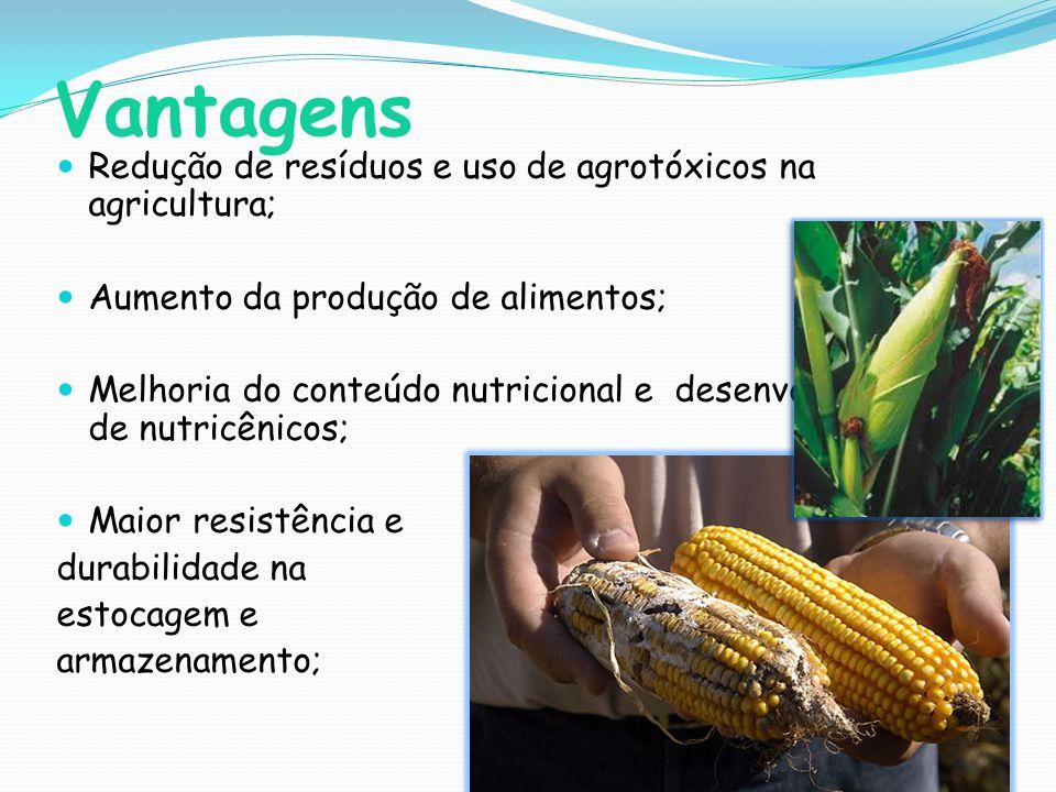 Vantagens Redução de resíduos e uso de agrotóxicos na agricultura;