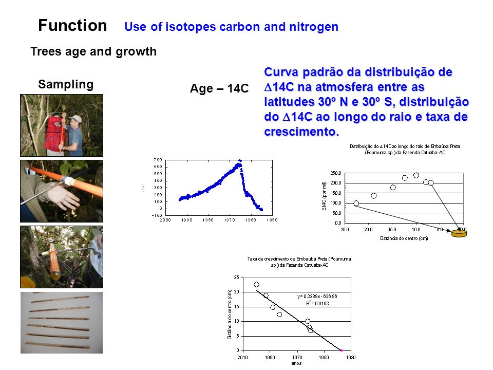 Function Use of isotopes carbon and nitrogen Trees age and growth