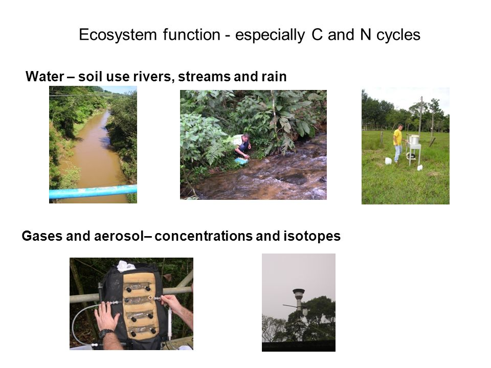 Ecosystem function - especially C and N cycles