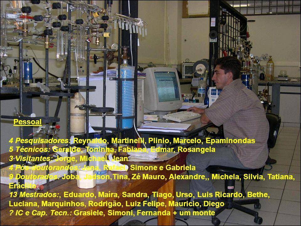 Pessoal 4 Pesquisadores: Reynaldo, Martinelli, Plinio, Marcelo, Epaminondas. 5 Técnicos: Geraldo, Toninha, Fabiana, Edmar, Rosangela.