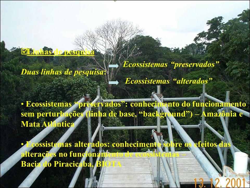 Linhas de pesquisa Duas linhas de pesquisa: Ecossistemas preservados Ecossistemas alterados