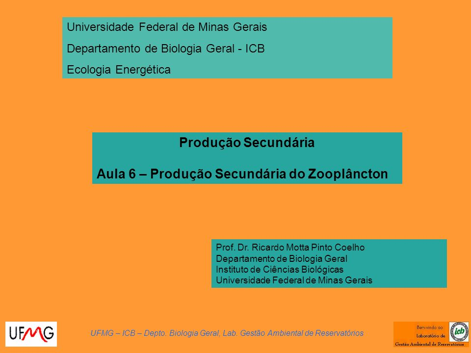 Aula 6 – Produção Secundária do Zooplâncton