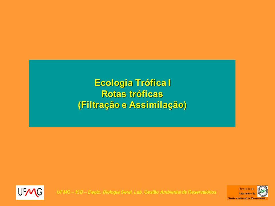 Ecologia Trófica I Rotas tróficas (Filtração e Assimilação)