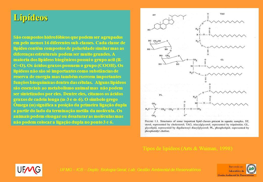 Lipídeos Tipos de lipídeos (Arts & Waiman, 1998)