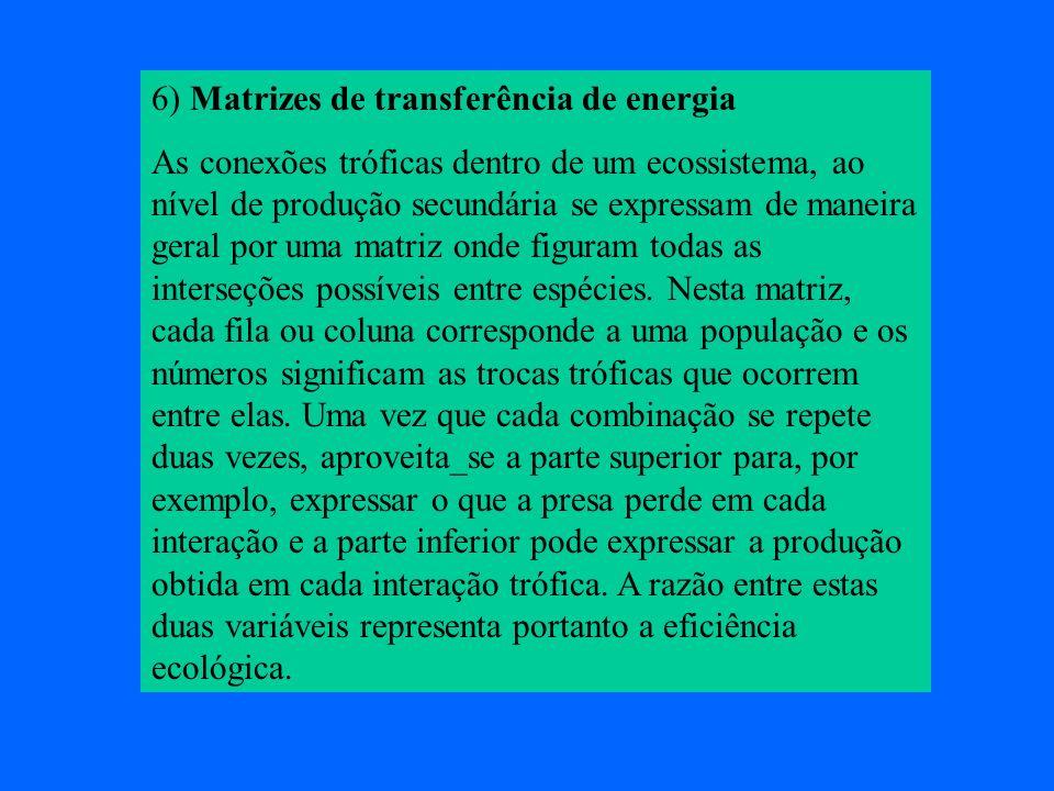6) Matrizes de transferência de energia
