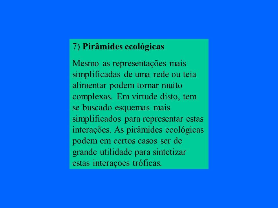 7) Pirâmides ecológicas
