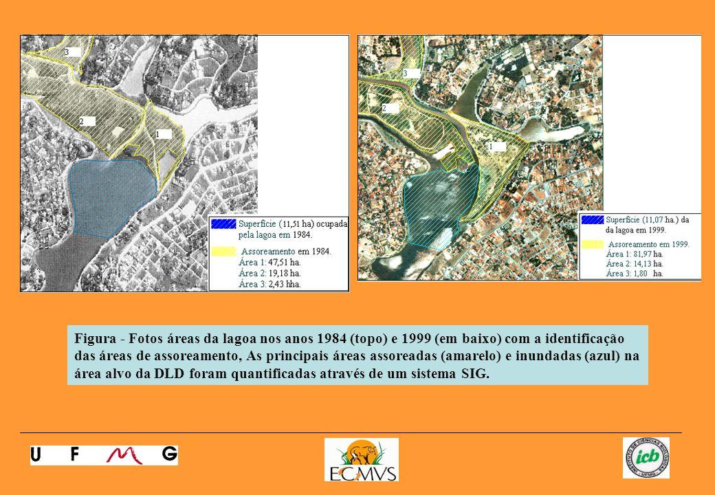 Figura - Fotos áreas da lagoa nos anos 1984 (topo) e 1999 (em baixo) com a identificação das áreas de assoreamento, As principais áreas assoreadas (amarelo) e inundadas (azul) na área alvo da DLD foram quantificadas através de um sistema SIG.