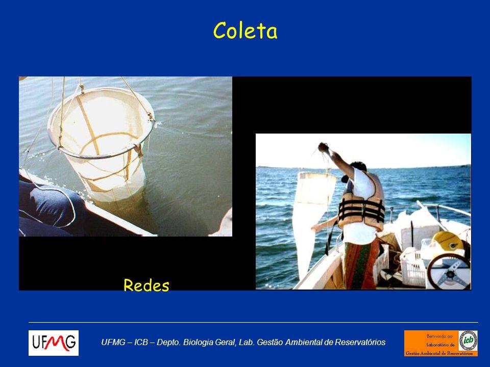 Coleta Redes UFMG – ICB – Depto. Biologia Geral, Lab. Gestão Ambiental de Reservatórios