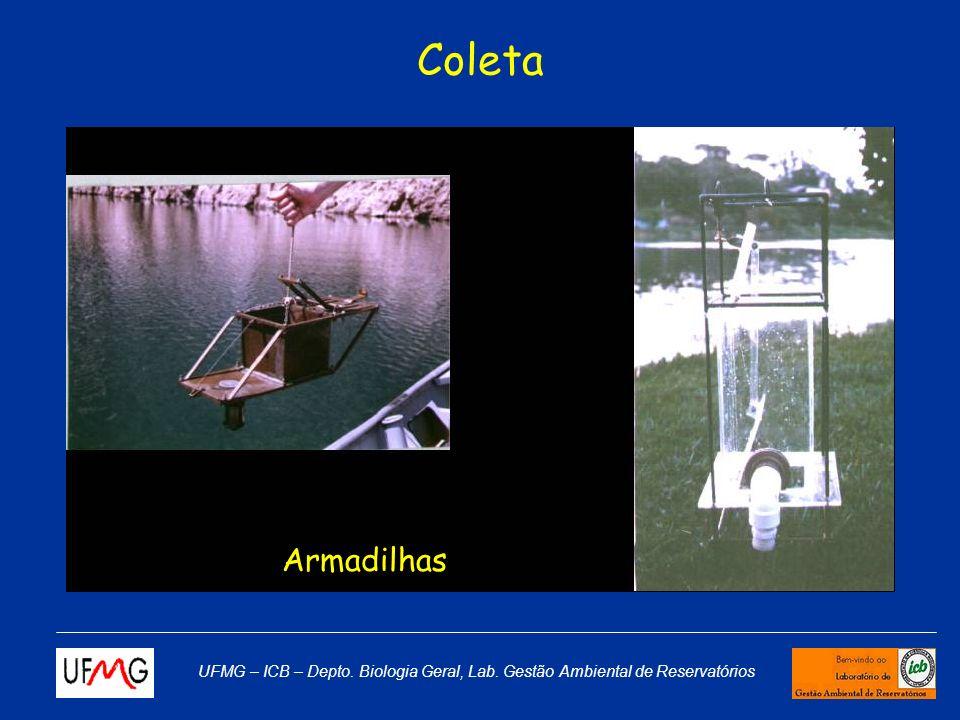 Coleta Armadilhas UFMG – ICB – Depto. Biologia Geral, Lab. Gestão Ambiental de Reservatórios