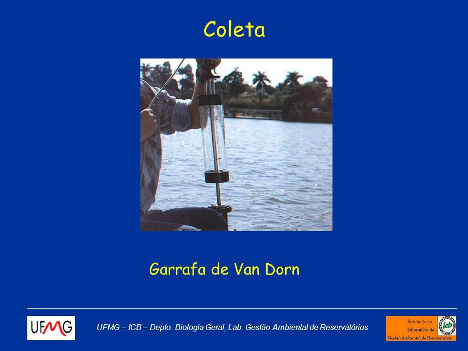 Coleta Garrafa de Van Dorn
