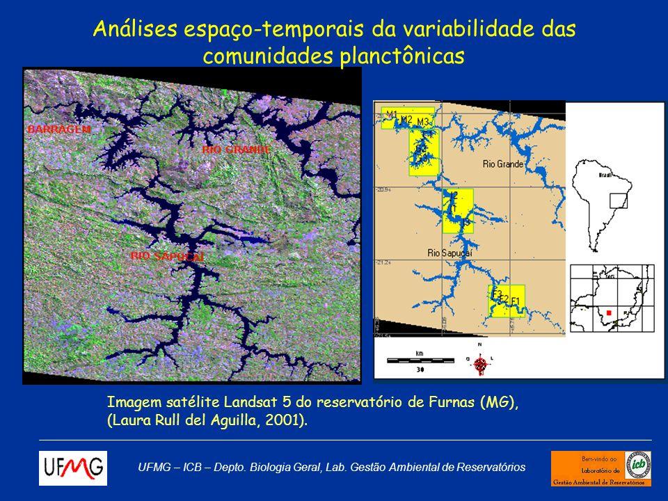 Análises espaço-temporais da variabilidade das comunidades planctônicas